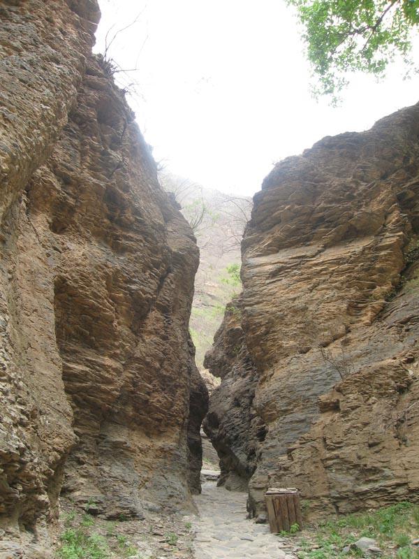 太平猴山风景区